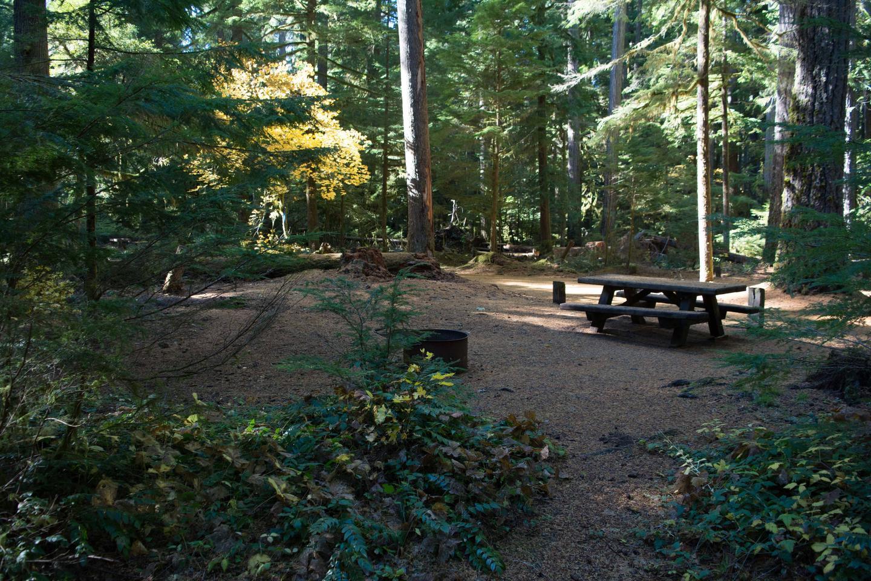 La Wis Wis Campground siteLa Wis Wis Campsite