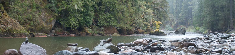 La Wis WisCowlitz River