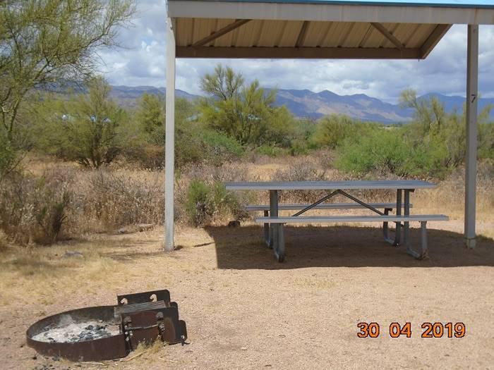 Campsite 7 Campsite 7, Cholla Campground