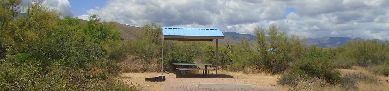 Campsite 9 at Cholla CampgroundCampsite 9, Cholla Campground