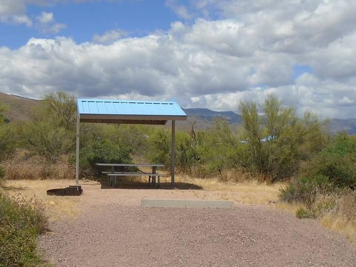 Site 9 with a picnic table, fire ring, shade structure, and parking.