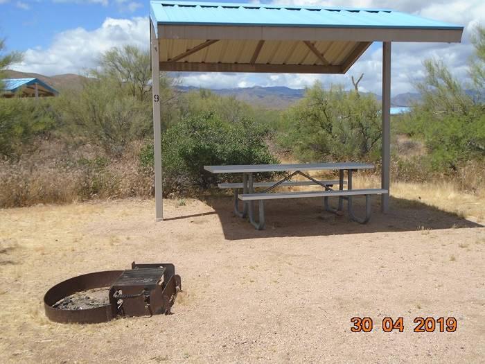 Campsite 9 Campsite 9, Cholla Campground