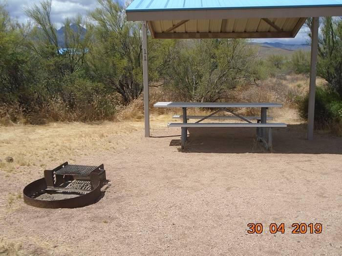 Campsite 11Campsite 11, Cholla Campground