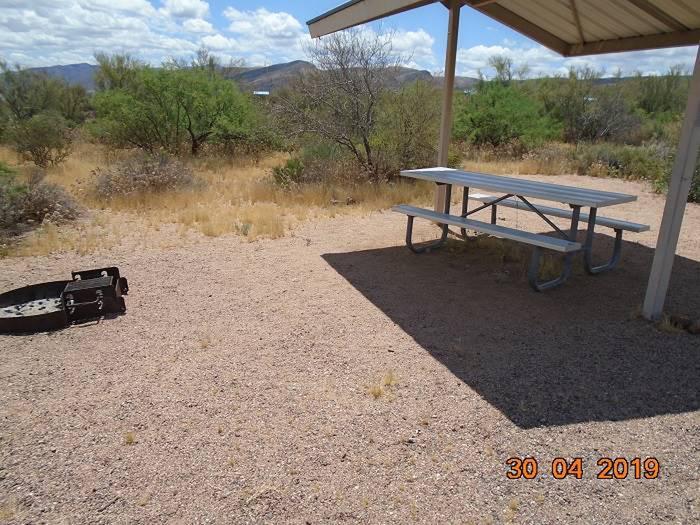 Campsite 15Campsite 15, Cholla Campground
