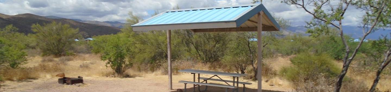 Campsite 21 at Cholla CampgroundCampsite 21, Cholla Campground