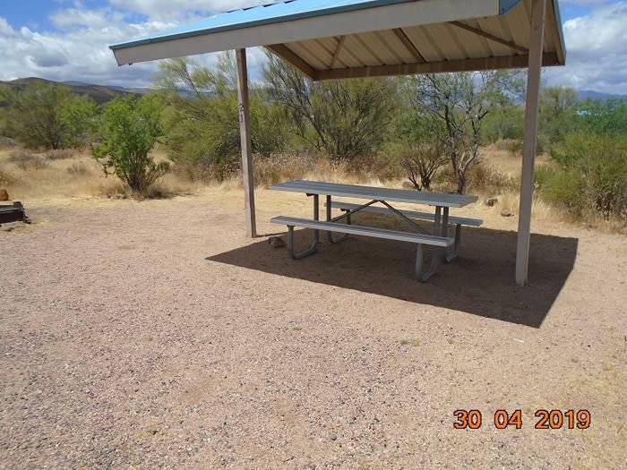Campsite 21Campsite 21, Cholla Campground