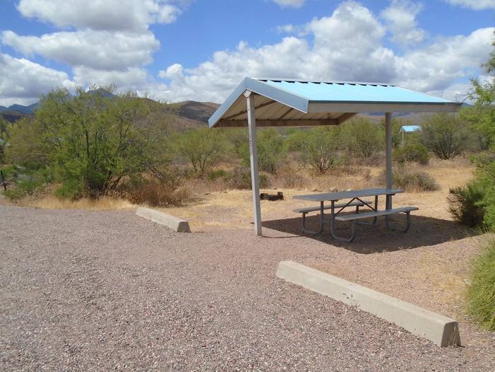 Campsite 25 at Cholla CampgroundCampsite 25, Cholla Campground