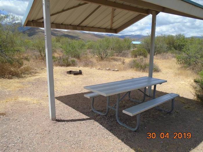 Campsite 25Campsite 25, Cholla Campground
