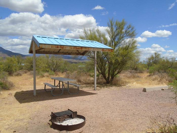 Campsite 31 at Cholla Campground with a picnic table, fire ring, shade structure, and parking.