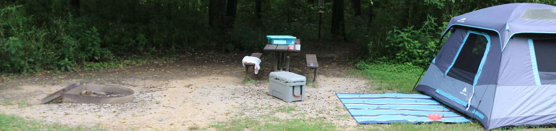 Steel Creek Camp Site #25