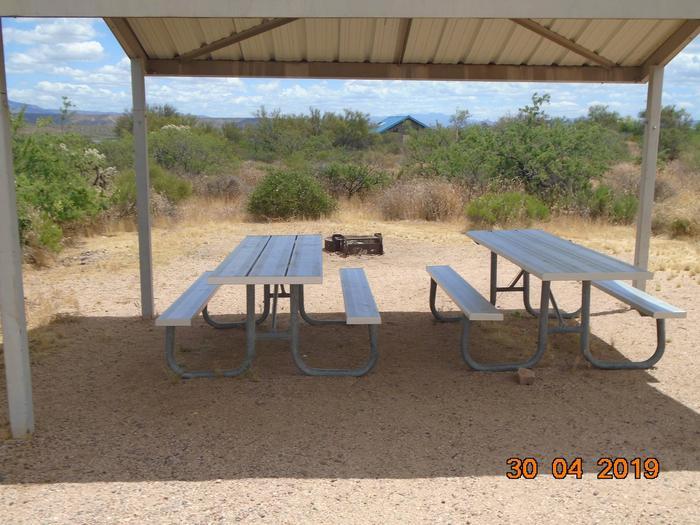 Campsite 49Campsite 49, Cholla Campground