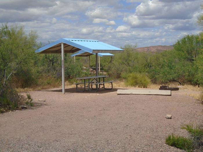 Campsite 53 at Cholla CampgroundCampsite 53, Cholla Campground