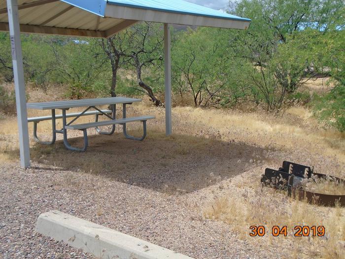 Campsite 57Campsite 57, Cholla Campground