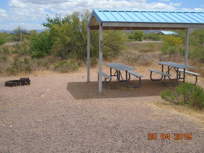 Campsite 73Campsite 73, Cholla Campground