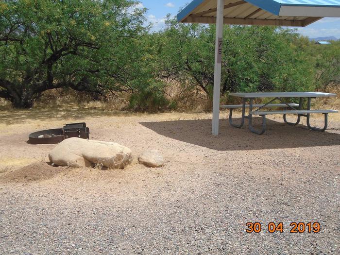 Campsite 75Campsite 75, Cholla Campground