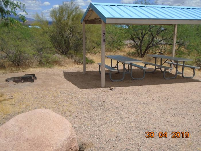 Campsite 79Campsite 79, Cholla Campground