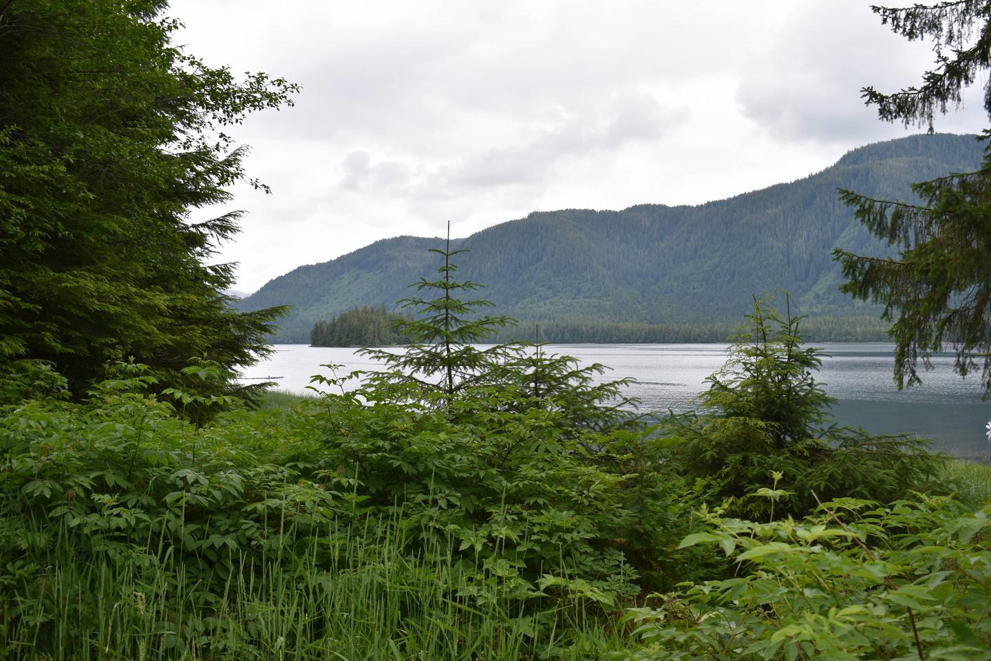 View from Helm Bay Cabin