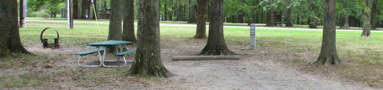 Maplewood 45 Campsite
