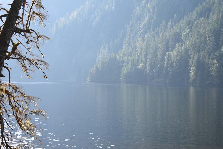 Humpback Lake Cabin ViewHumpback Lake