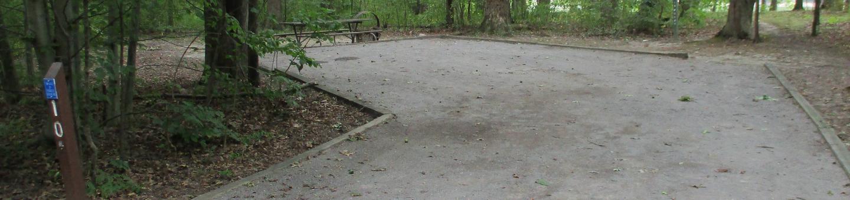 Oak 11 Campsite