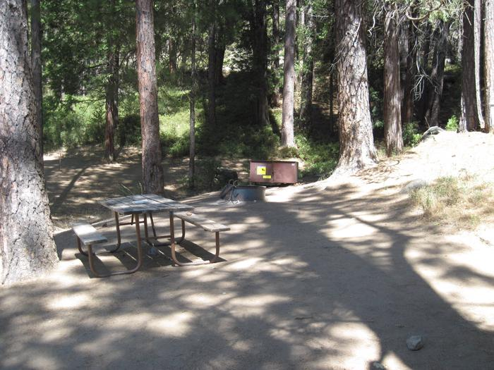 Food locker, picnic table, and fire ringSite 29