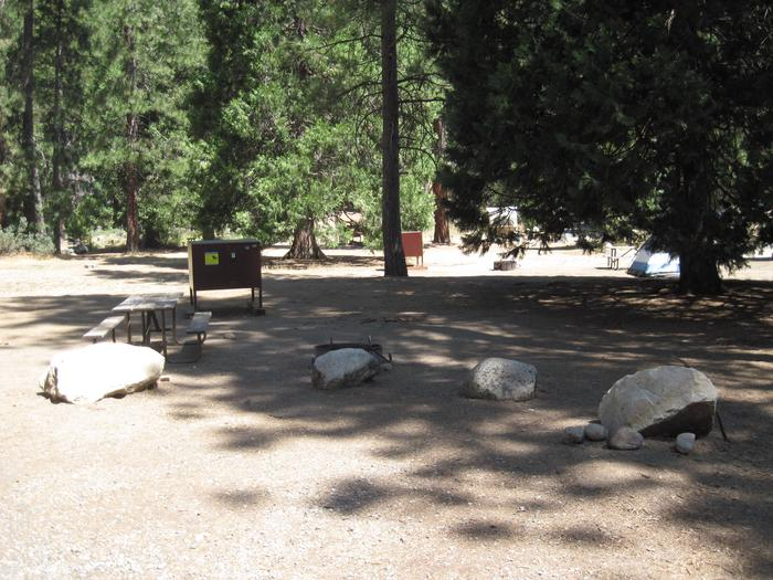Food locker, picnic table, and fire ringSite 64
