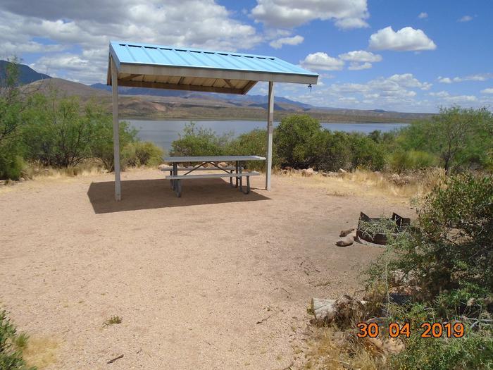 Campsite T1Campsite T1, Cholla Campground