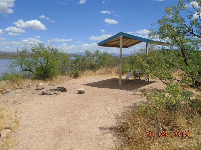 Campsite T3Campsite T3, Cholla Campground