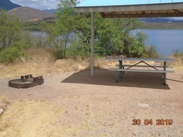 Campsite T5Campsite T5, Cholla Campground