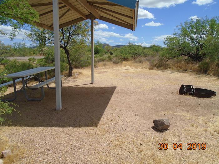 Campsite T13Campsite T13, Cholla Campground