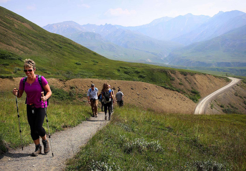 Thorofare Ridge TrailFrom Eielson, visitors can hike a short, easy loop trail, or the more strenuous Thorofare Ridge Trail