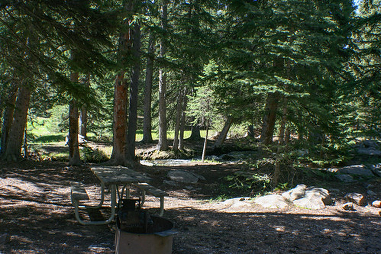 Table at Buffalo Creek Campground