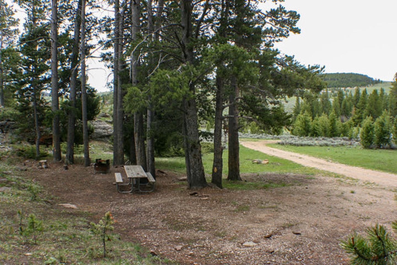 Grave Springs campsite