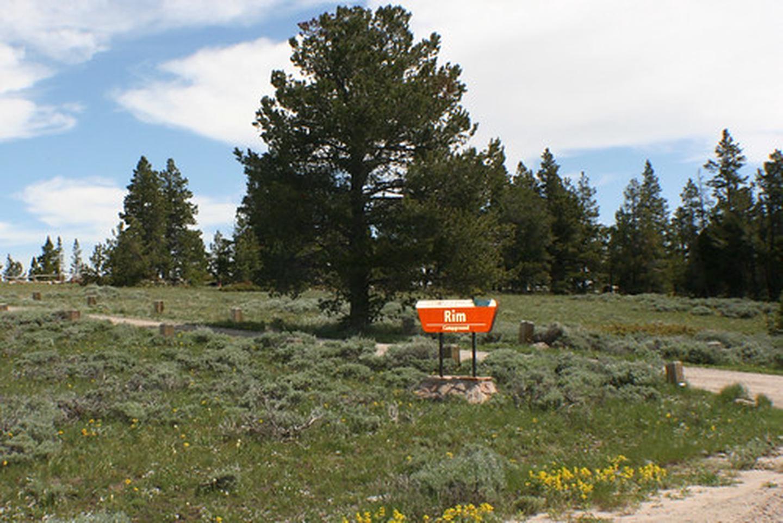 Rim Campground sign