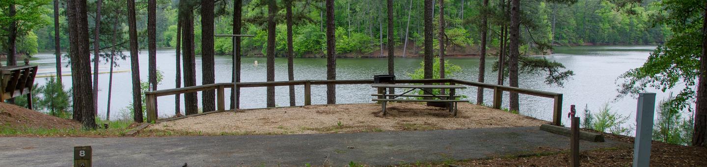 Upper Stamp Creek Campground, campsite 8Upper Stamp Creek Campground, campsite 8.