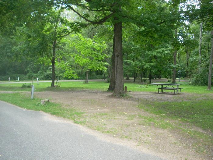 Stony Point Site 8