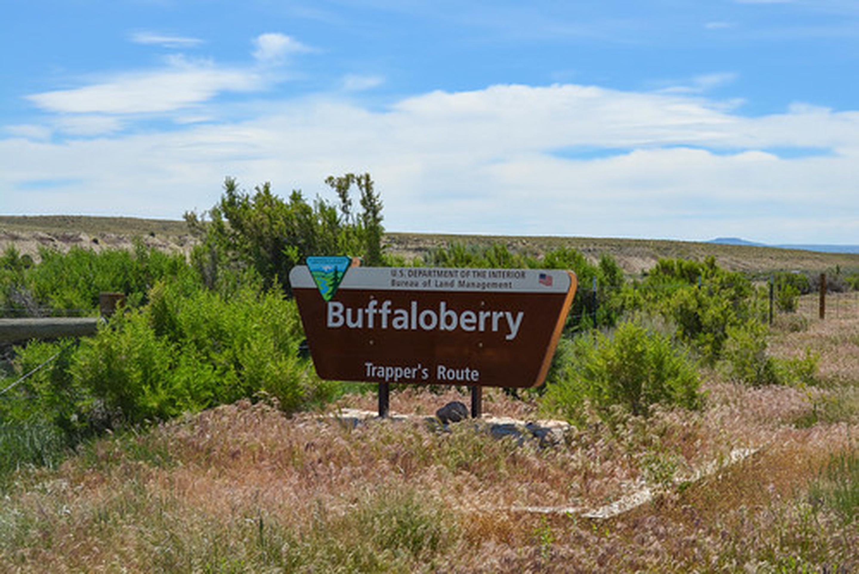 Buffaloberry Campground sign