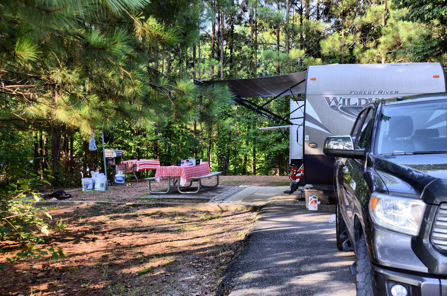 Awning-side clearance, campsite view.Payne Campground, campsite 002.