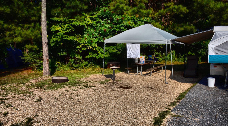Campsite view.Payne Campground, campsite 006.