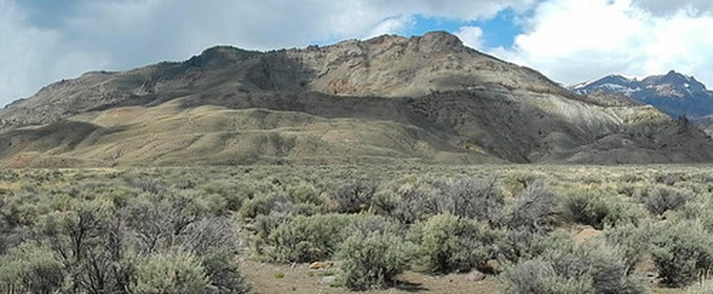 Bobcat-Houlihan Trail