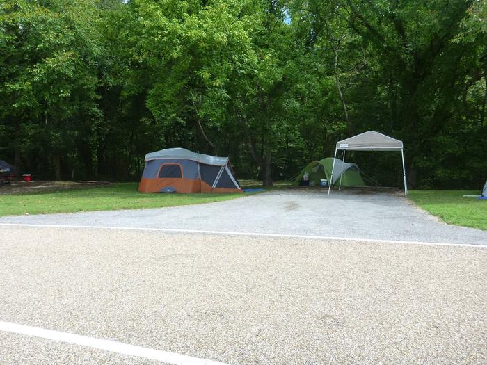 Tyler Bend Main Loop Site #4-1Site #4, 40' back-in, no tent pad.  Parking area is wide enough to park RV & car side by side.