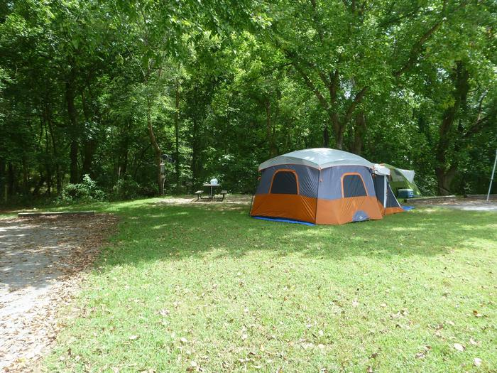 Tyler Bend Main Loop Site #4-3Site #4, 40' back-in, no tent pad.  Parking area is wide enough to park RV & car side by side.