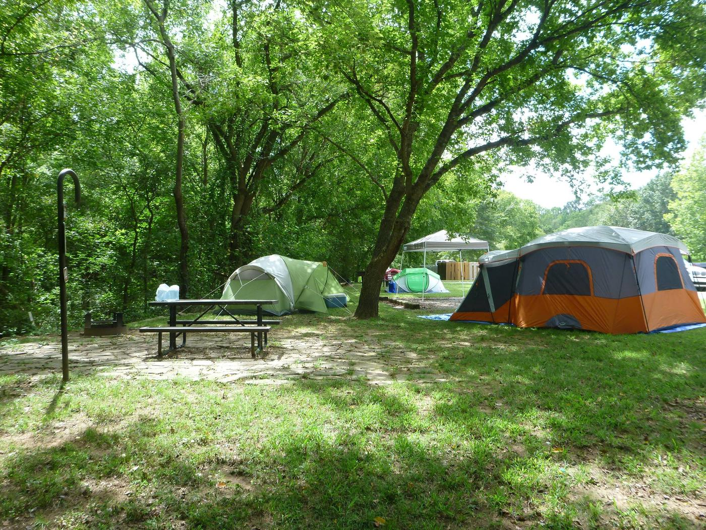 Tyler Bend Main Loop Site #4-4Site #4, 40' back-in, no tent pad.  Parking area is wide enough to park RV & car side by side.
