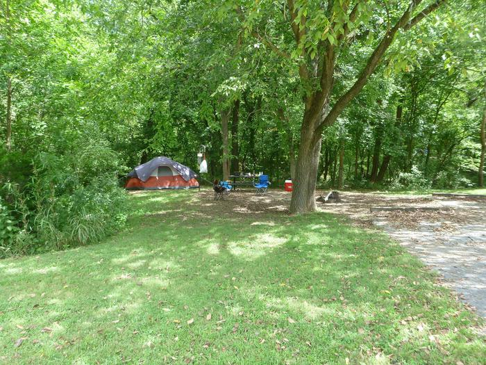 Tyler Bend Main Loop Ste #5-2Site #5, 54' back-in, no tent pad. Parking area is wide enough for RV and car to park side by side.