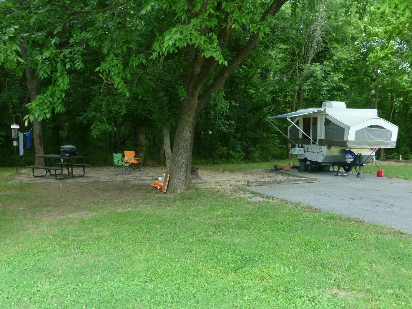 Tyler Bend Main Loop Ste #5Site #5, 54' back-in, no tent pad. Parking area is wide enough for RV and car to park side by side.