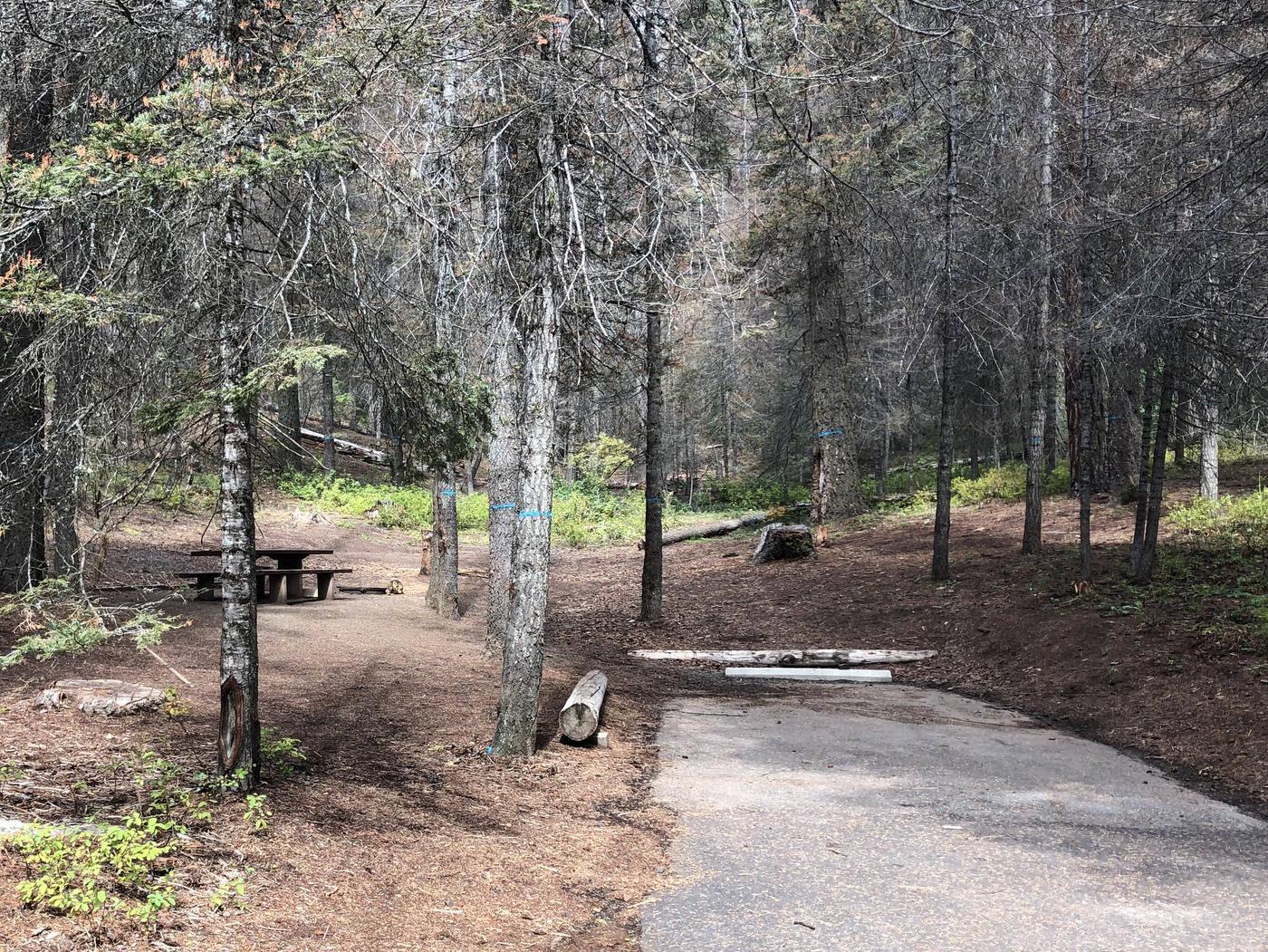 Site 11