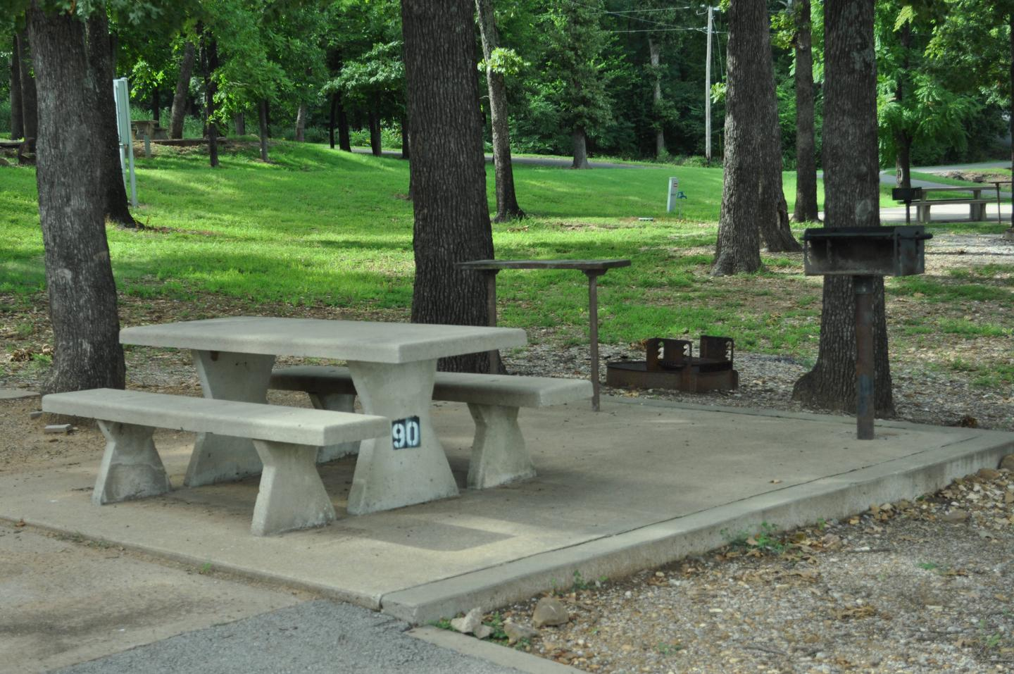 Site 90 offers a concrete picnic table, pedestal grill, utility table and fire ring.Site 90 - Taylor Ferry