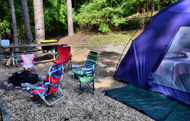 Campsite view-2.Payne Campground, campsite 50.