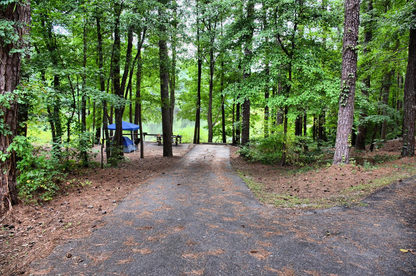 Driveway slope.Payne Campground, campsite 53.