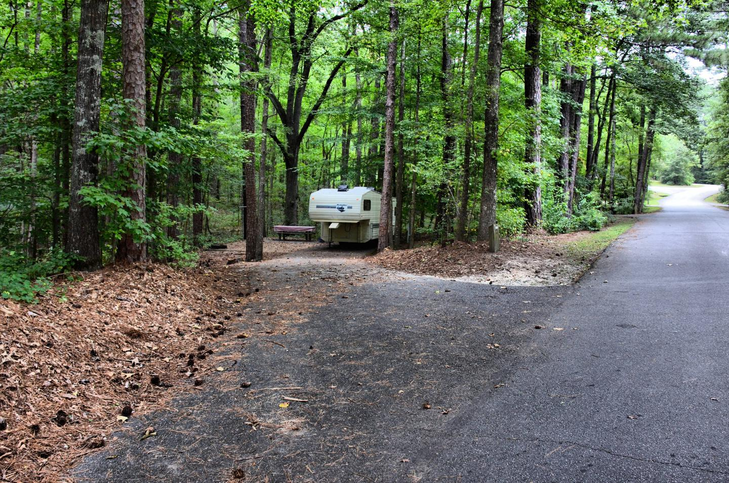 Driveway slope, awning-side clearance.Payne Campground, campsite 56.